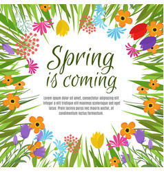 Beautiful spring background with early vector