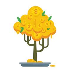 golden money tree bonsay vector image