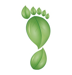 green foot vector image