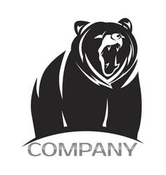 modern bear logo vector image