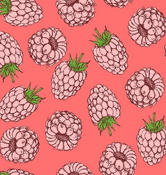 Sketch tasty raspberry in vintage style vector image