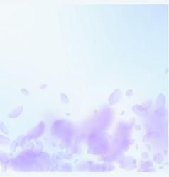 Violet flower petals falling down divine romantic vector