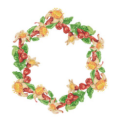 wreath frame with pomegranate flowers and vector image