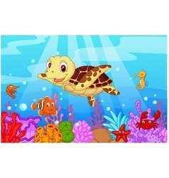 Cartoon baby cute turtle with collection fish vector image