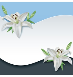 Greeting or invitation card with 3d flower lily vector image vector image