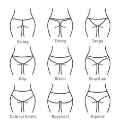 woman underwear panties types vector image