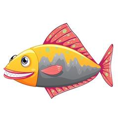 A colorful big fish vector image