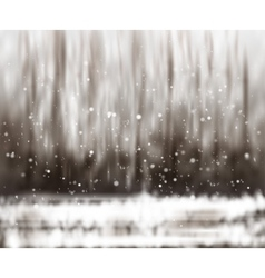 Blurry abstract bokeh lights on nature background vector image vector image