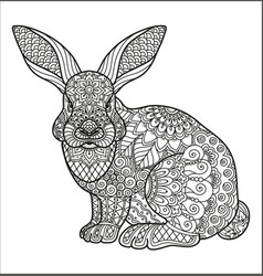 coloring page for adult and kids coloring book or vector image