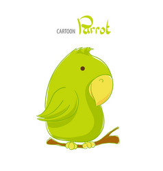 cute green parrot vector image
