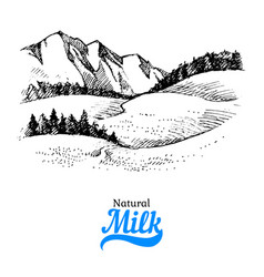hand drawn sketch milk products background black vector image