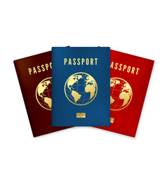 set biometric blue brown and red passports vector image