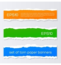 Torn colorful banners vector image