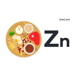 Vitamin zn flat foods vector