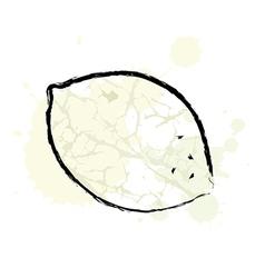 Zen Lemon vector image