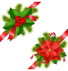 Winter Flower With Ribbons vector image