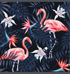 flamingo strelitzia palm leaves dark background vector image