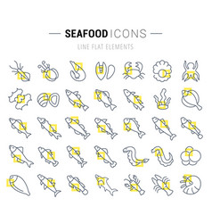 Set line icons seafood vector