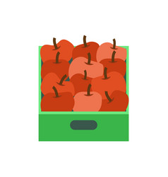 shelf with apples supermarket grocery store vector image