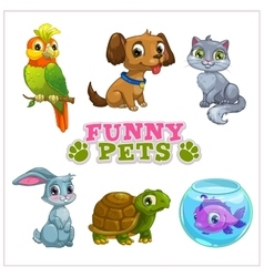 Funny cartoon pets collection vector image