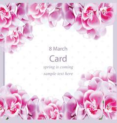 spring geranium flowers bouquet card background vector image vector image