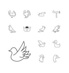 13 bird icons vector