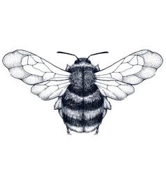 Bee tattoo dotwork tattoo symbol of diligence vector