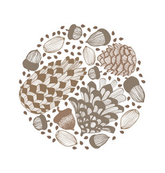 Composition with cones and acorns hand drawn vector