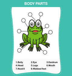 Frog vocabulary part of body vector