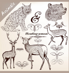 Hand drawn forest animals set for design vector