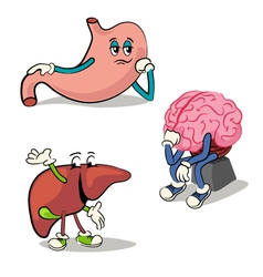 human internal organs characters 2 vector image