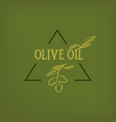 Olive oil design concept vector image