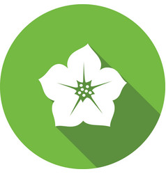 Petunia flower icon Floral symbol Round circle vector