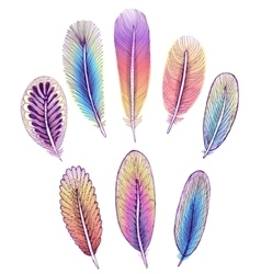 Set of isolated colorful feathers EPS10 vector