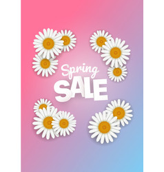 spring sale offer season sale banner with white vector image