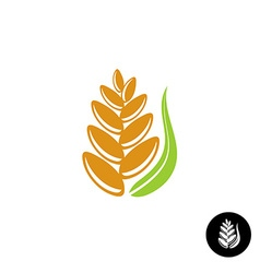 Wheat ear logo vector image