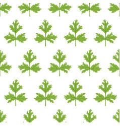 coriander seamless pattern cartoon flat vector image