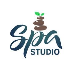 spa studio logo stroke green leaf vector image vector image