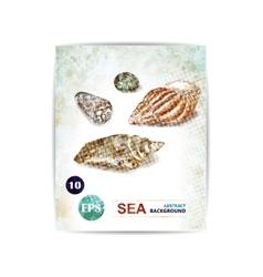 vintage marine background with seashells vector image