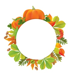 Autumn round banner with pumpkins vector image