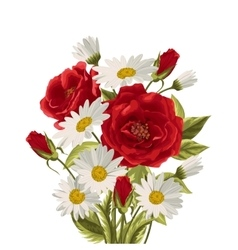 Beautiful white daisies and red roses vector image