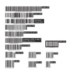 business barcodes and qr codes isolated on white vector image