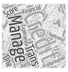 Credit score trans union Word Cloud Concept vector