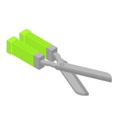 garden scissors icon isometric style vector image