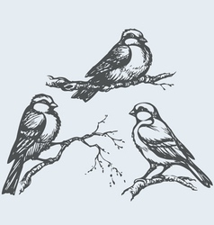 Tits on branches vector