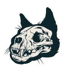 vintage cat skull concept vector image