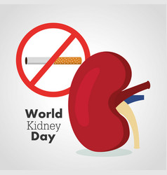 World kidney day card prohibits the cigarrette vector