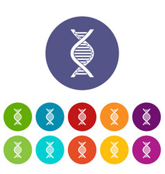 dna strand set icons vector image