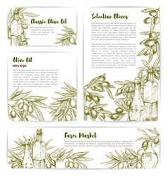 olive oil extra virgin product templates vector image