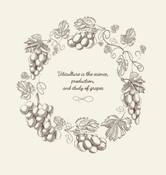 abstract natural wreath vintage template vector image